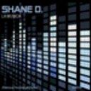 Shane D feat. Kerry Wood - Silence (D's Broken Soul Dub)