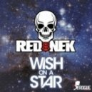 Rednek - Wish On A Star (Arion Remix)