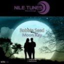 Robbie Seed - Moon Ray (Olbaid remix)