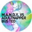 M.A.N.D.Y. & Adultnapper -  Bus Ted (Kenny Larkin Long Neve Remix)