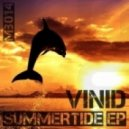Vinid - Line In The Sand (Original Mix)