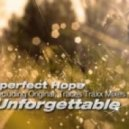 Imperfect Hope - Unforgettable (Original Mix)