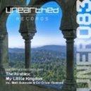 The Airstatic - My Little Kingdom (Ex-Driver Remix)