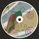 Fely B - Tic Tec Boom (Original Mix)