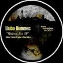 Liubo Dummec -  Minimal Risk (Original Mix)