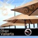 Olbaid - Once (Original Mix)