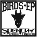 Spenca - Birds (Original Mix)
