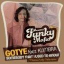 Gotye feat. Kimbra - Somebody That I Used To Know (Moscow Funky Mafia radio version)
