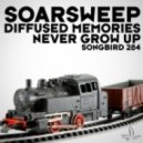 Soarsweep - Never Grow Up