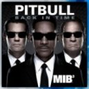 Pitbull - Back In Time (Gregor Salto Remix)