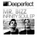 Mr. Bizz - Infinity (Original Mix)