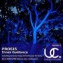 Prosis - Inner Guidance (Karol XVII and MB Valence Present Jackspeare Remix)
