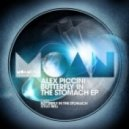 Alex Piccini - Butterfly In The Stomach (Original Mix)