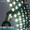Function C - Northern Lights (Running Man Remix)