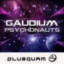 Gaudium - SSRI