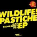 WILDLIFE! - Hear Dat (feat Toddla T)