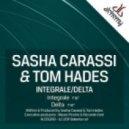 Tom Hades - Pitched to the Max (Sasha Carassi Remix)