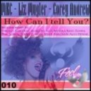 Corey Andrew, Liz Mugler, MKC  -  How Can I Tell You (Ferny Garzia Remix)