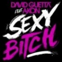 David Guetta Feat Akon  - Sexy Bitch (Acapella)