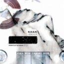 H.O.S.H. - Don Arp (Original Mix)