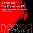 David Rull - Tundelala (Original Mix)