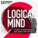 Vicente Belenguer, T Tommy, Motiv 2U - Logical Mind (Original Mix)