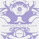 Roberto Calzetta and Twin Soul - Disco Shuffle (Original Mix)