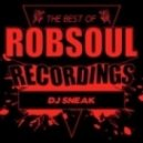 DJ Sneak - This Way (Original Mix)
