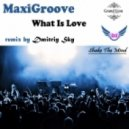 Maxigroove - What Is Love (Dmitriy Sky Radio Edit)