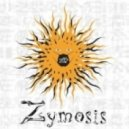 Zymosis - Moment Of Eclipse