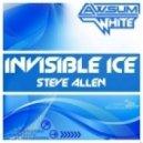 Steve Allen  - Invisible Ice (Kaimo K Remix)