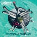 Chemical Brothers  - The Salmon Dance (Raphaell C Vocal Mix)