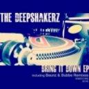 The Deepshakerz - Bring it Down (Baunz Remix)