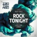 Deep Voice - Rock Tonight (Original Mix)