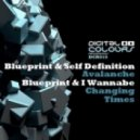 Blueprint & Self Definition - Avalanche