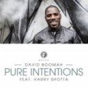 David Boomah - Pure Intentions (DJ Chap Remix)