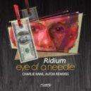 Ridium - Eye Of A Needle (Charlie Kane Remix)