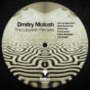 Dmitry Molosh - The Labyrinth (Soundage Remix)
