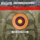 Múm - Ballad Of Broken Birdie Records (Cry Wolf Dreamscape Remix)