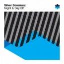 Silver Sneakerz - The Horn (Original Mix)
