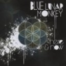 Blue Lunar Monkey - We Are Connected