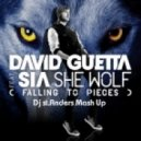 David Guetta ft. Sia - She Wolf (st.Anders mash up)