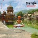 Shpongle - Walking Backwards Through the Cosmic Mirror