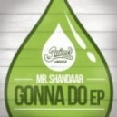 Mr Shandaar - Lose Control (Original Mix)