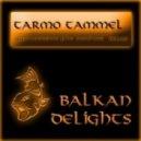 Tarmo Tammel - Guitarrissimo (Dunkan Remix)