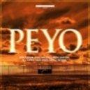 SUBMISSION   - Peyo
