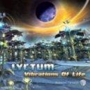 The Riddler - Eleven (Lyctum Rmx)