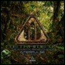 Tetrameth - The Eclectic Benevolence (Interpulse Remix)