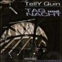 TellY Quin - Discogranitgrau (Original Mix)