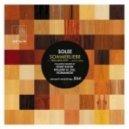 Solee - Traumschiff (Original Mix)